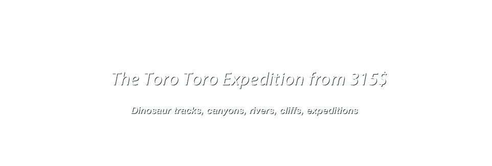 The Toro Toro Expedition From 315$